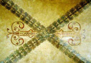 Canabis Protection, 7 segreti di Bologna Italy
